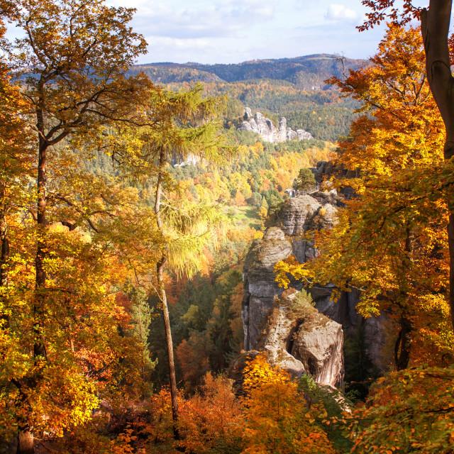 """Autumn Splendor. Saxon Switzerland"" stock image"