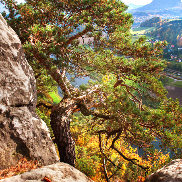 """On The Edge. Saxon Switzerland"" stock image"