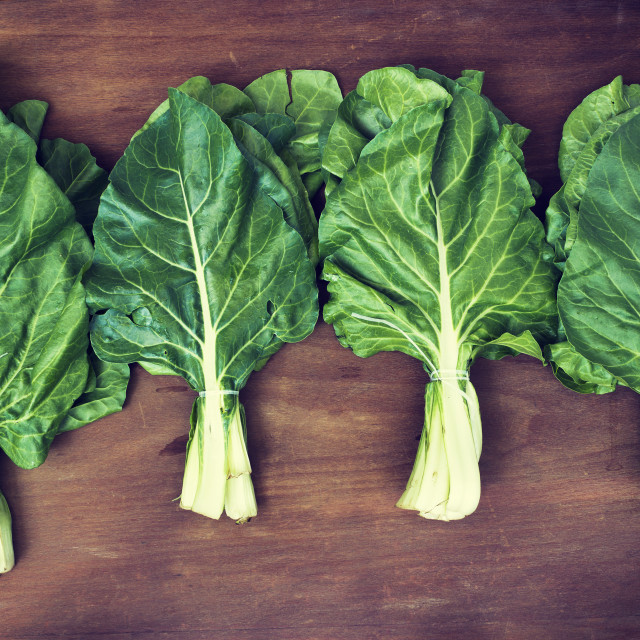 """""""Healthy vegetables - fresh chard plant"""" stock image"""