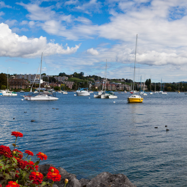 """""""Little boats moored on Lake Geneva by the town of Morges, Switze"""" stock image"""