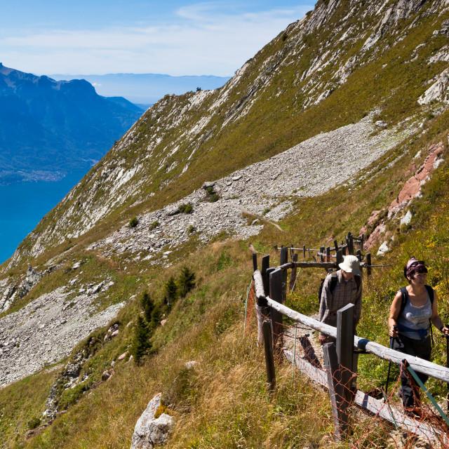 """""""Hikers walking along the vast hillside of Rochers-de-Naye near M"""" stock image"""