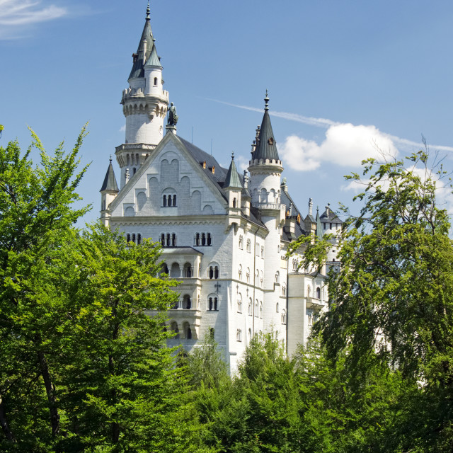 """Neuschwanstein Castle"" stock image"