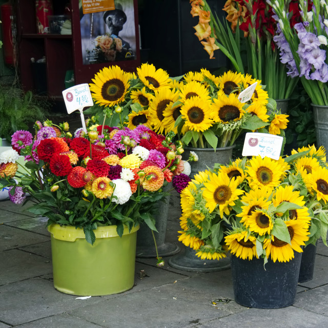 """Flower stall in The Viktualienmark, Munich."" stock image"