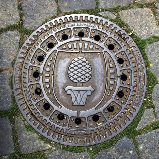 """Cast iron drain cover with the Augsburg pineapple crest mark"" stock image"