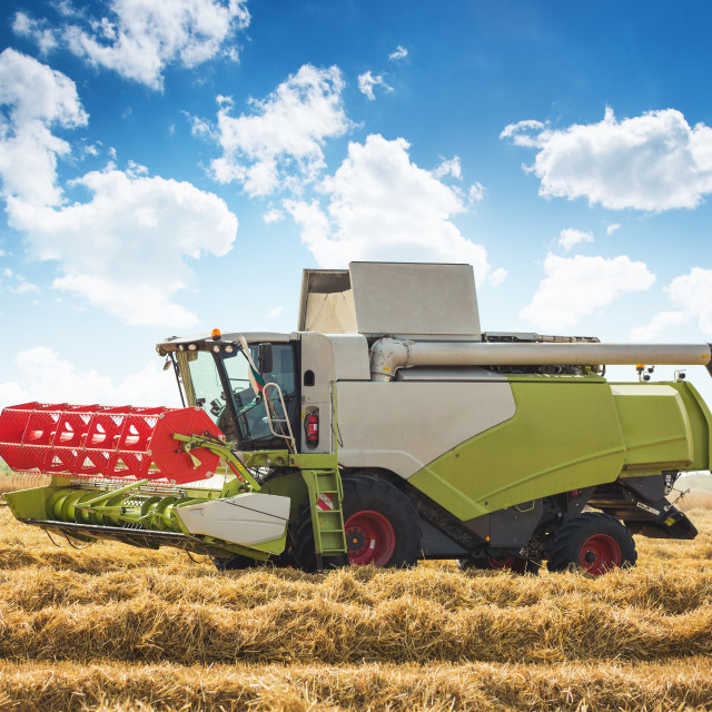 """Harvesting wheat harvester on a sunny summer day"" stock image"