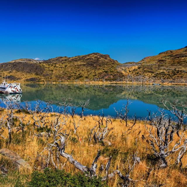 """Lago Pehoe, Chile"" stock image"