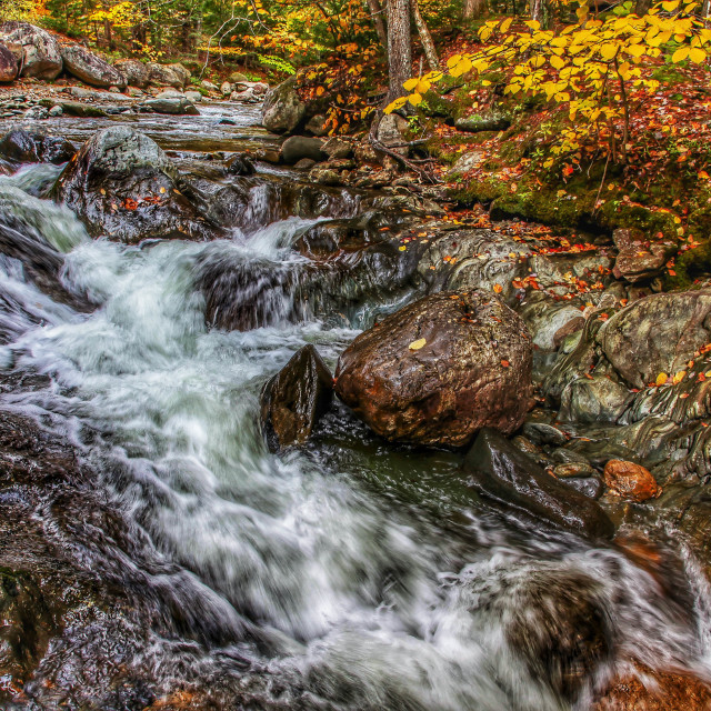 """""""River with autumn colors"""" stock image"""