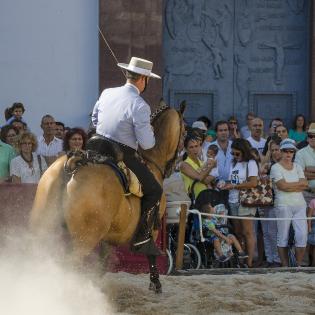 """Day of the horses, horse dressage celebration, event, Fuengirola, Málaga, Andalusia, Spain. September 2018"" stock image"