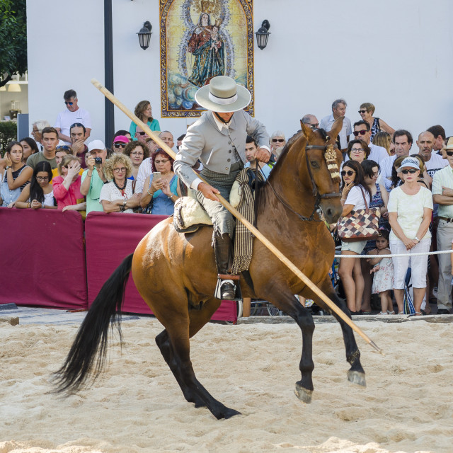 """picador, horse dressage celebration, event, Fuengirola, Málaga, Andalusia, Spain."" stock image"