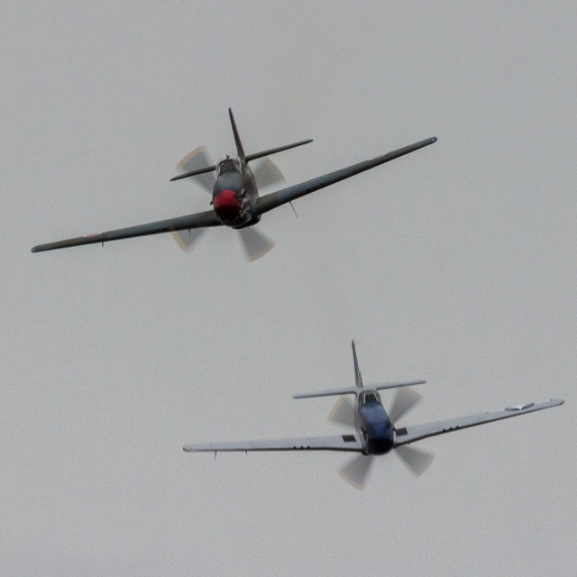 """A Pair of North American P-51D Mustangs."" stock image"