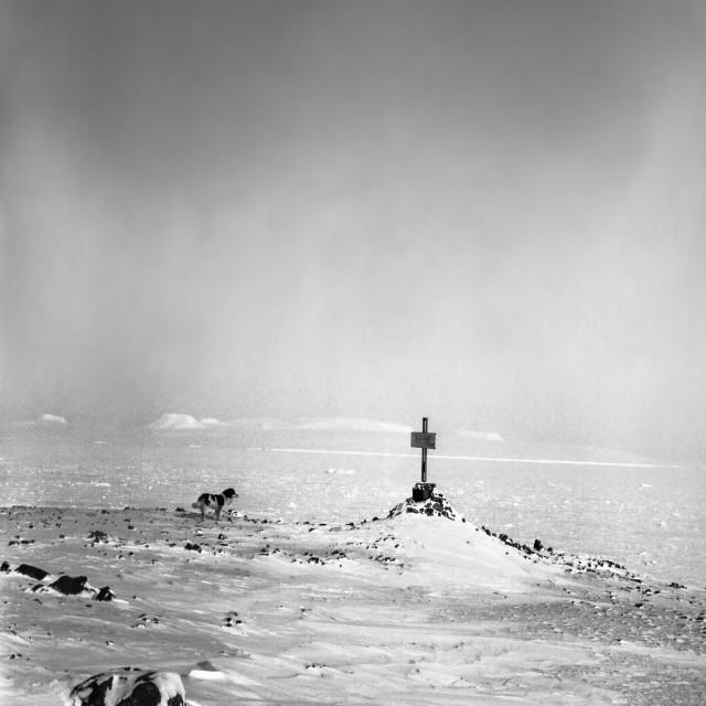 """On Franz Josef Land. Hayes Island."" stock image"