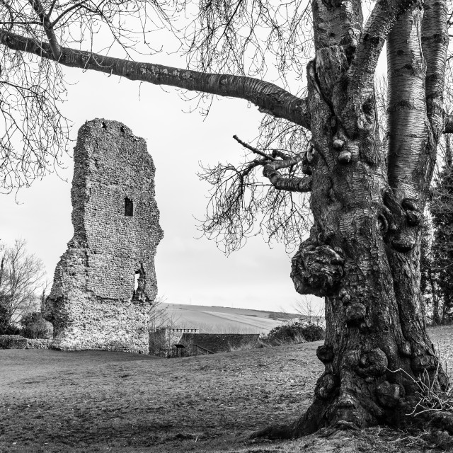 """Bramber Castle"" stock image"