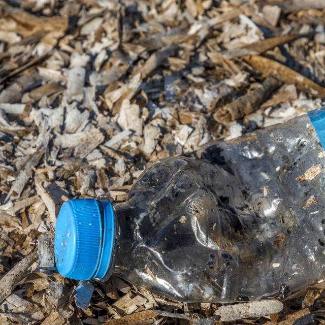 """Discarded plastic pet bottle 5"" stock image"