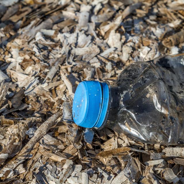 """Discarded plastic pet bottle 4"" stock image"