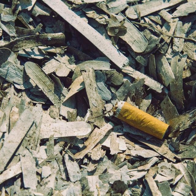 """Discarded cigarette butt"" stock image"
