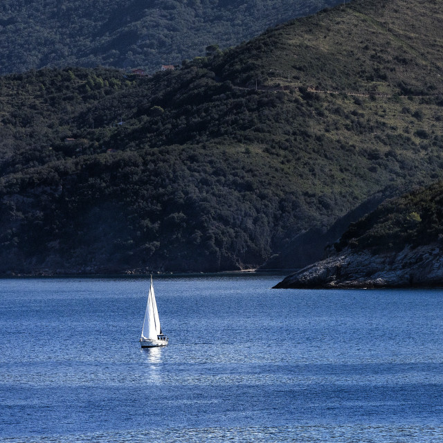 """""""Sailboat on the waters surrounding the iland of Elba, Italy"""" stock image"""