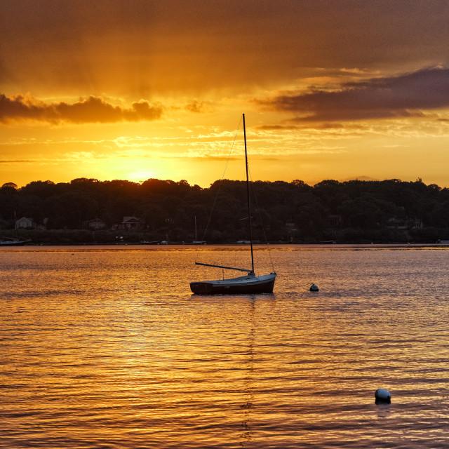"""""""Sunrise sailboat, West Tisbury, Martha's Vineyard"""" stock image"""