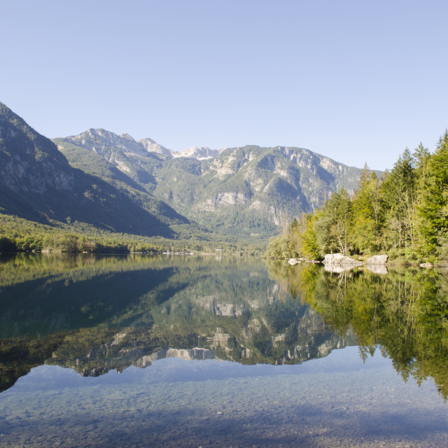 """Lake Bohinj"" stock image"