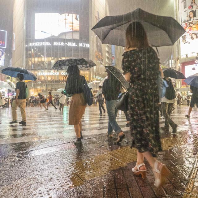 """Rain In Shibuya"" stock image"