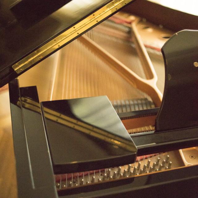 """Cconert grand piano strings"" stock image"