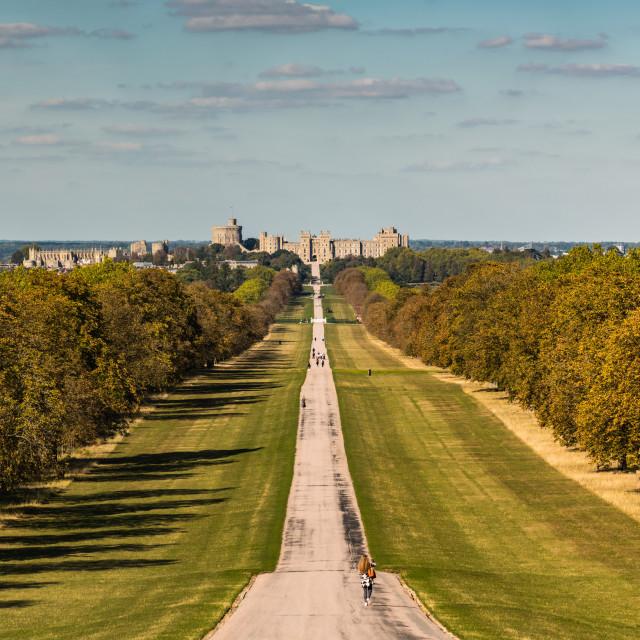 """Windsor Castle - The Long Walk"" stock image"