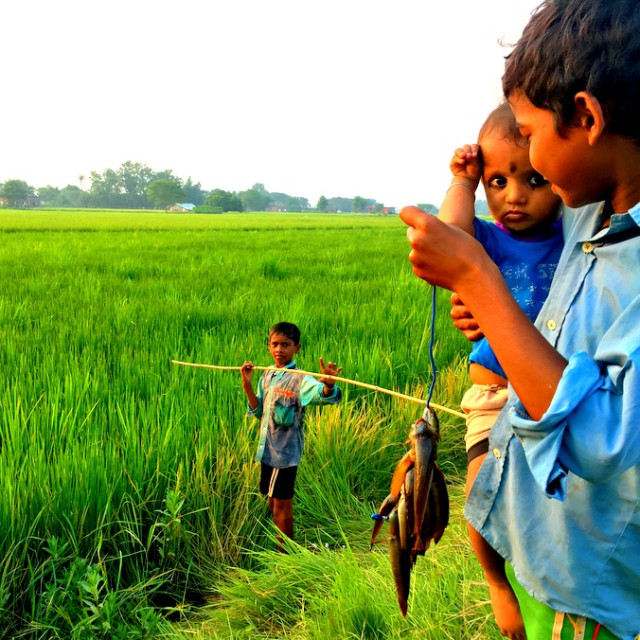 """""""A young boy fishes with a bamboo fishing rod in Terai, Nepal"""" stock image"""