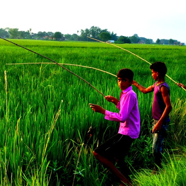 """""""A young boys fishes with a bamboo fishing rod in Terai, Nepal"""" stock image"""