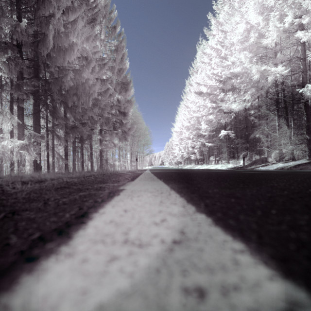"""Infrared Road"" stock image"