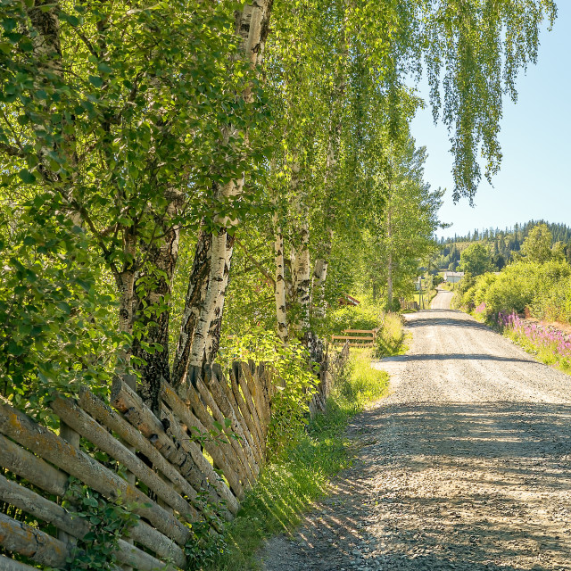 """""""A rural road uphill as a concept of goals, adventure, vision or journey"""" stock image"""
