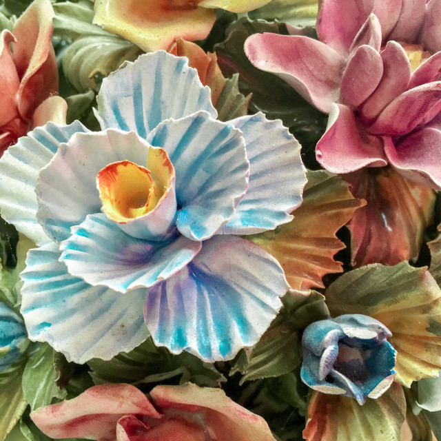 """China bone flowers"" stock image"