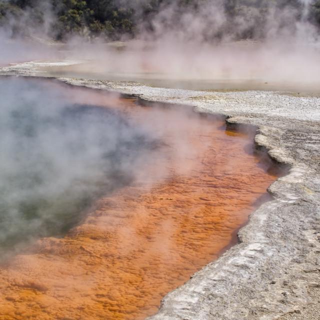 """Champagne pool at Rotorua in New Zealand"" stock image"