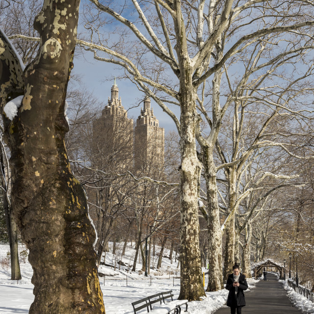 """Central Park in Winter"" stock image"