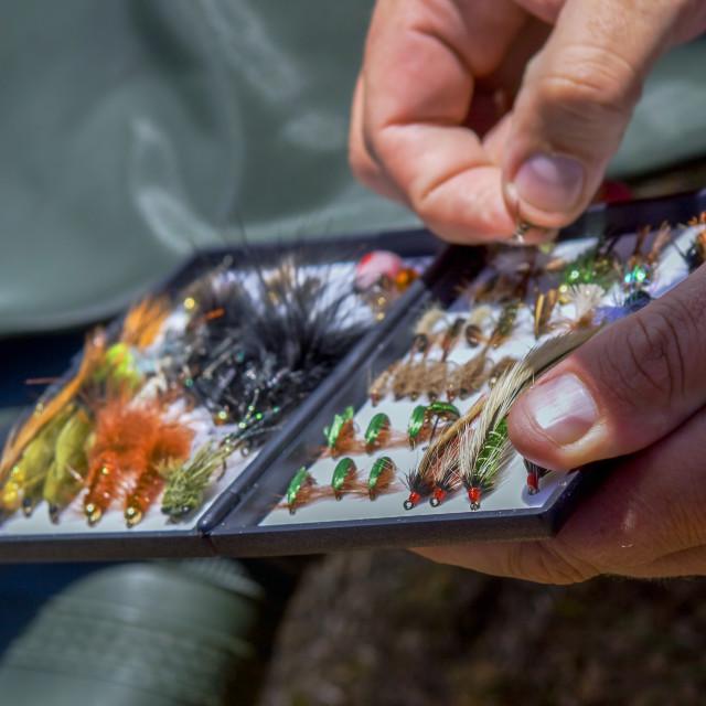 """""""Flyfishing"""" stock image"""
