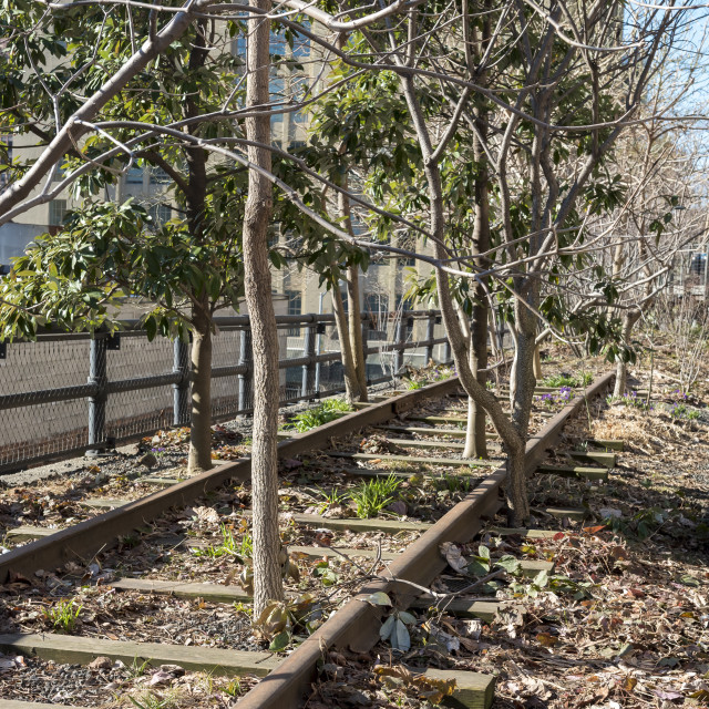 """""""The High Line, New York"""" stock image"""