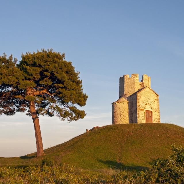 """St. Nicolas Church and Tree, Nin, Croatia"" stock image"