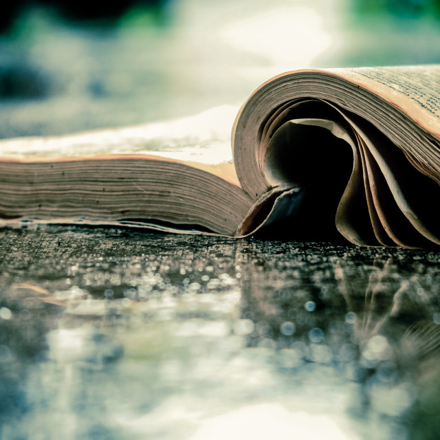 """Book Lying In The Rain"" stock image"