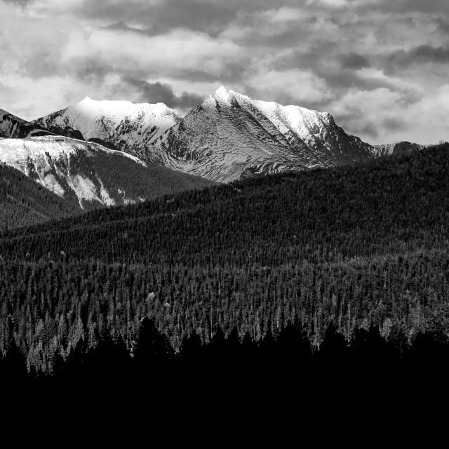 """""""Jasper national park"""" stock image"""