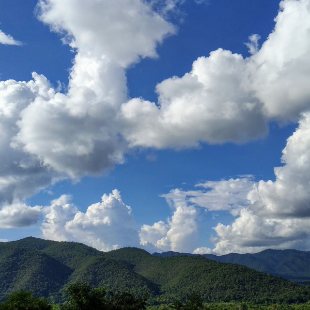 """""""view 