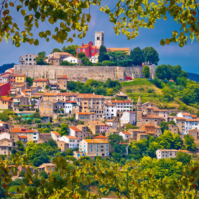 """Town of Motovun on picturesque hill view through leaf frame"" stock image"