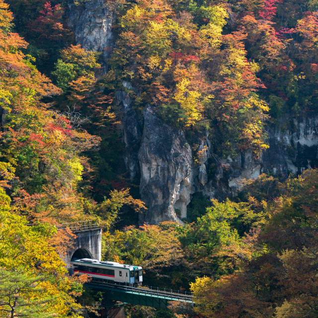 """Naruko Gorge valley with rail tunnel in Miyagi Tohoku Japan"" stock image"
