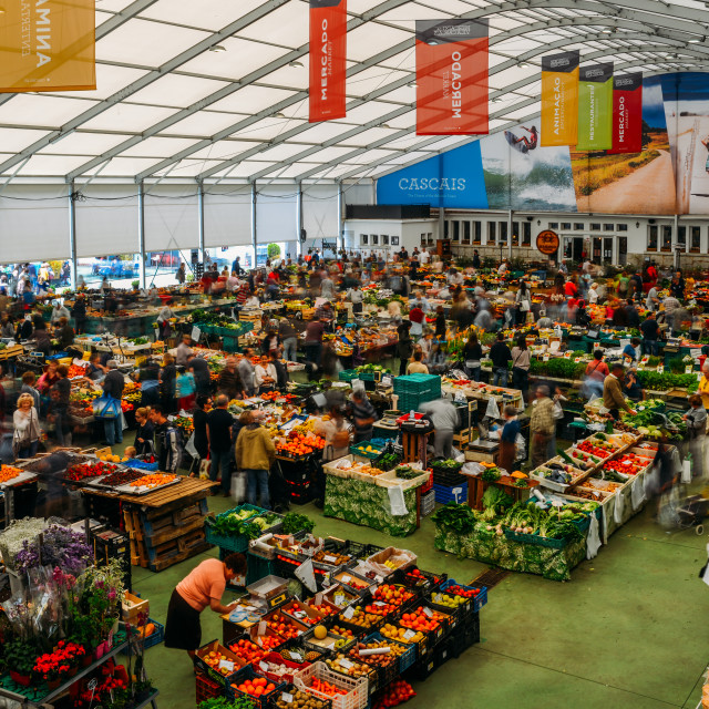 """""""The Cascais Market is the place to go for inexpensive and fresh local fish,..."""" stock image"""