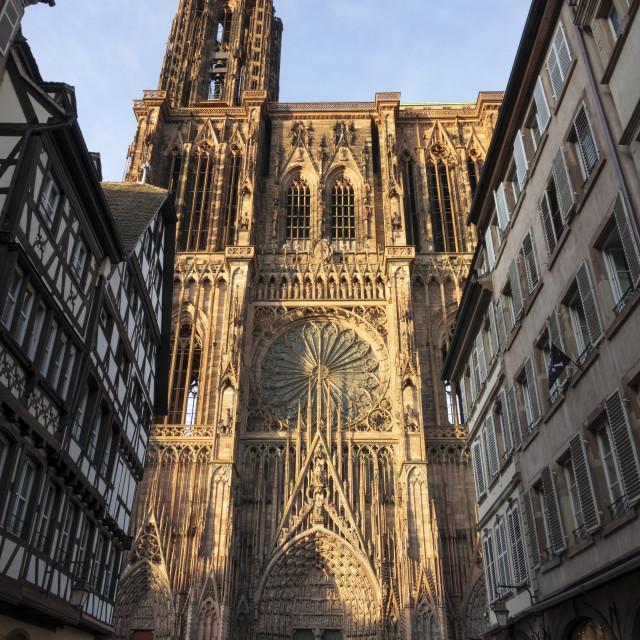 """West Front, Strasbourg Cathedral, France4"" stock image"