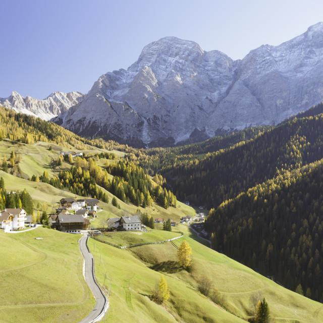 """Autumn colour in the Dolomites of Sud Tirol, Italy."" stock image"