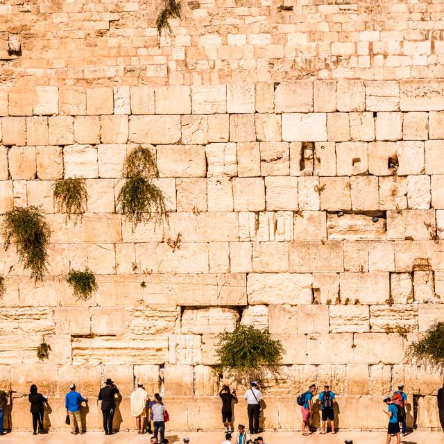 """""""Western Wall in Jerusalem, Israel"""" stock image"""
