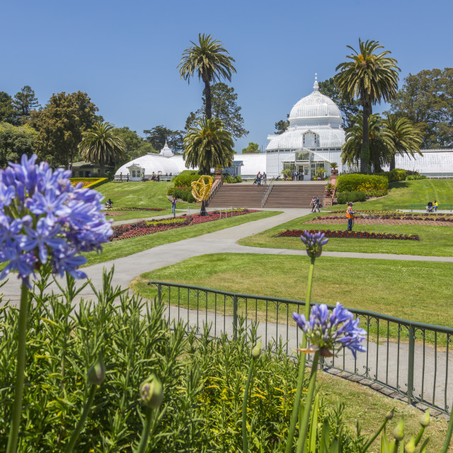 """""""Conservatory of Flowers, Golden Gate Park, San Francisco, California, USA,..."""" stock image"""