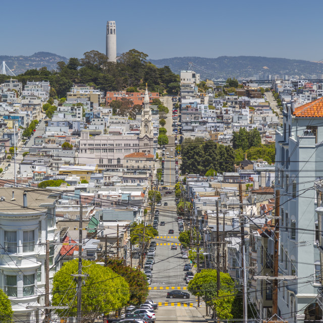 """""""View of Coit Tower from Russian Hill, San Francisco, California, United..."""" stock image"""