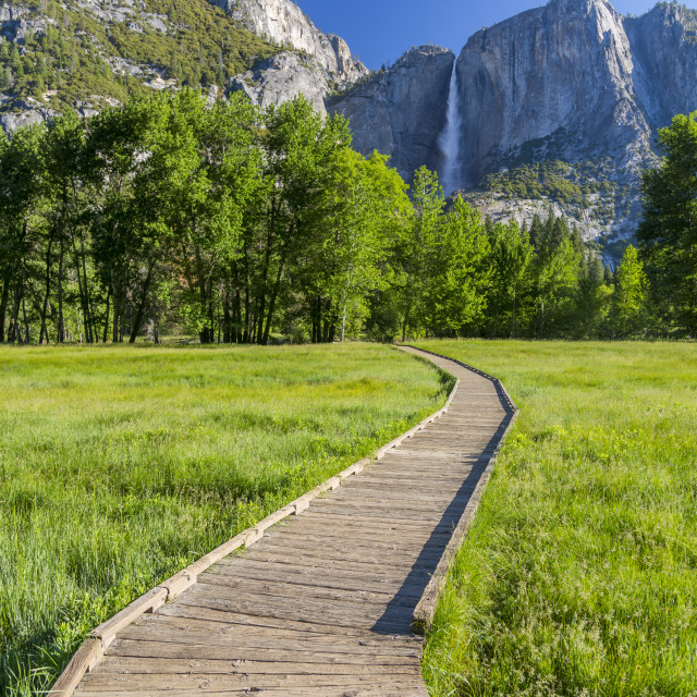 """""""View of Cooks Meadow and Upper Yosemite Falls, Yosemite National Park, UNESCO..."""" stock image"""