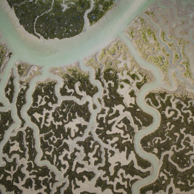 """""""Aerial view of San Fernando marshes, Bahia de Cadiz, Cadiz, Andalucia, Spain..."""" stock image"""