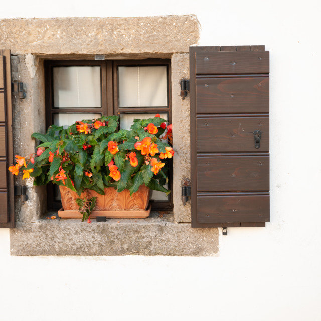 """Small window of an old house with flowers"" stock image"