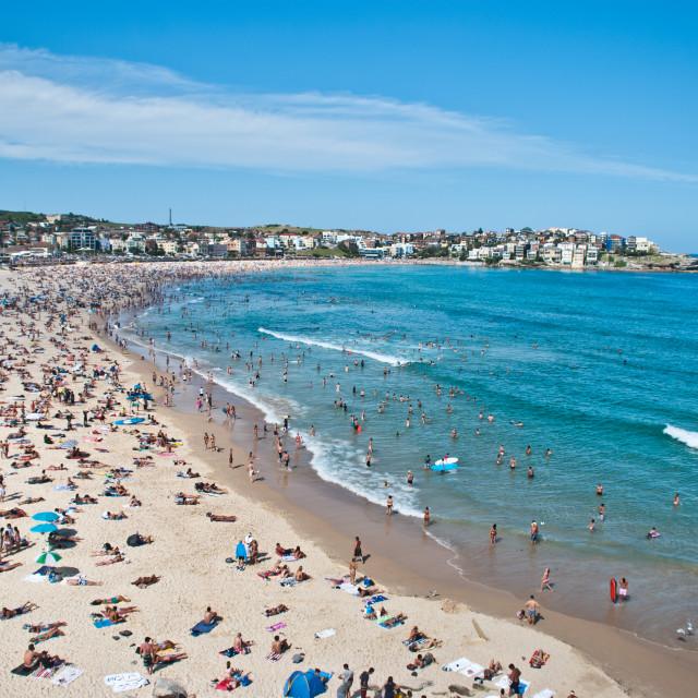 """""""Bondi Beach Shore View"""" stock image"""